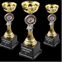 Ödül Kupa Baskılı